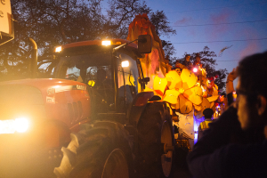 New Orleans Mardis Gras 2015 - Tractor